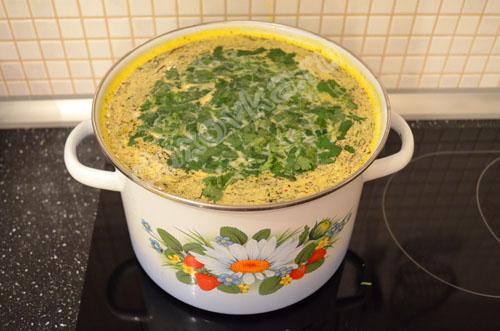 Сыр плавленный с луком для супа рецепт